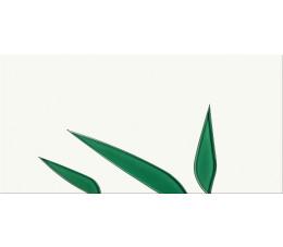 CERSANIT Płytki NATURE GREEN INSERTO LEAF 29,7X60