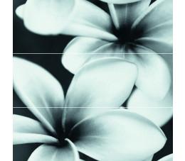 Cersanit płytki ścienne Flower grey composition 75 cm x 75 cm