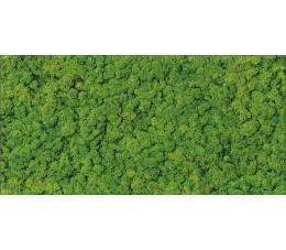 Cersanit dekor Fresh Moss flass inserto 29 cm x 59 cm